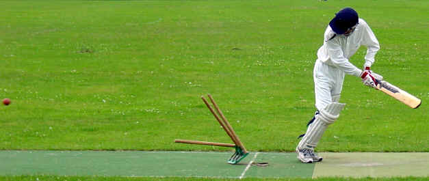 There goes the average: skipper Andrew Wardle checks the state of his wicket before departing for 2 v 008