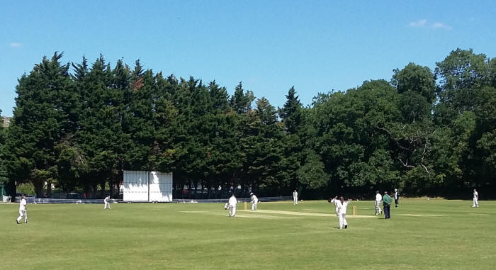 Old Fallopians batting v Streatham & Marlborough